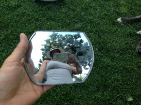 Mirror that fell off someone's car TRASH