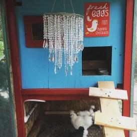 All self-respecting chicken coops demand chandeliers