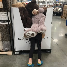 Giddy trip to Costco where we had Giant Teddy Bear Immersion Therapy