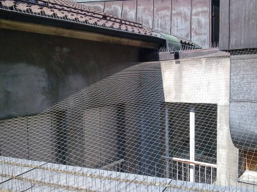 05-anti_pigeons-pigeon-protection-lausanne