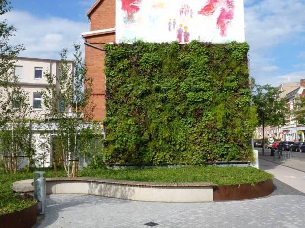 Grüne Wand an einem Wohnhaus
