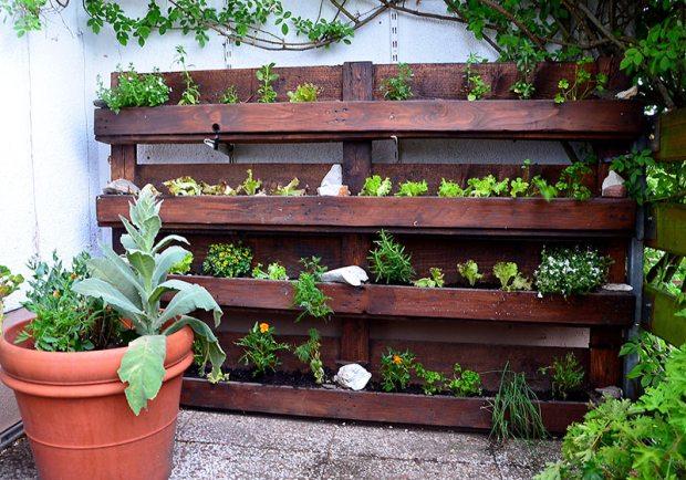 Mit Setzlingen ausgestatteter Palettengarten