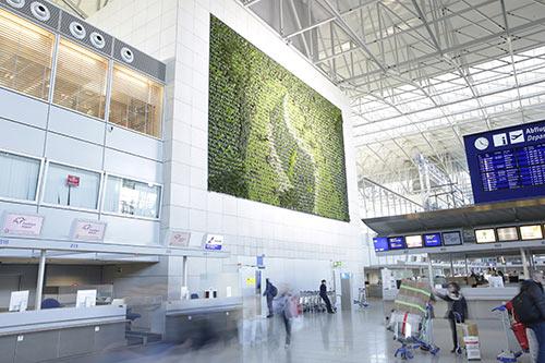 Vertical Greening am Flughafen in Frankfurt