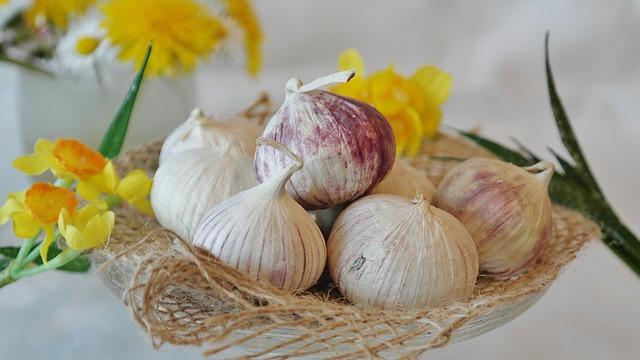 Garlic Reduces High Blood Pressure Levels