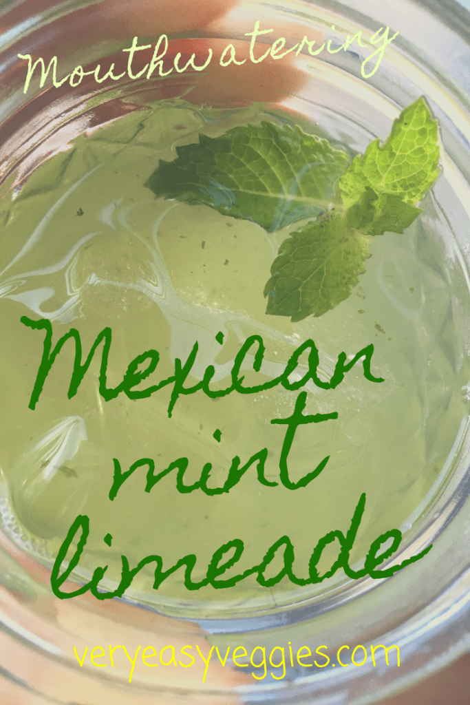 This mouthwatering fresh mint limeade is the perfect summer drink recipe to beat the heat!