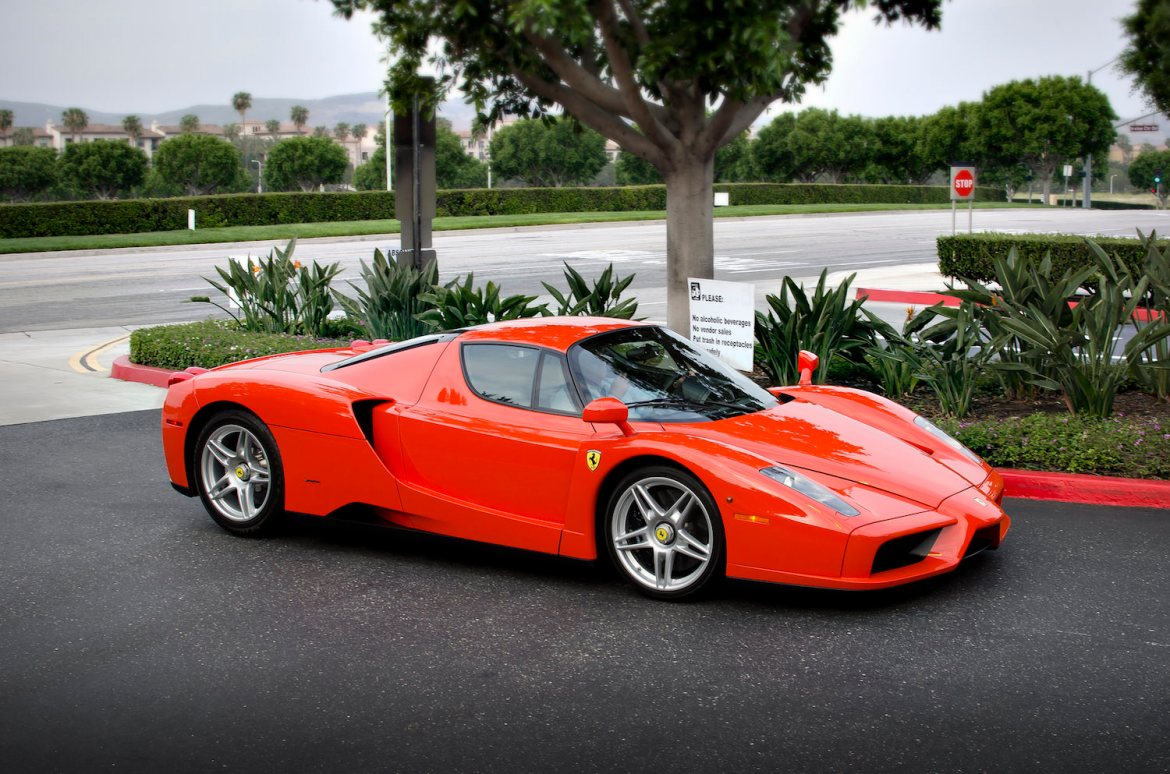 ferrari enzo photo