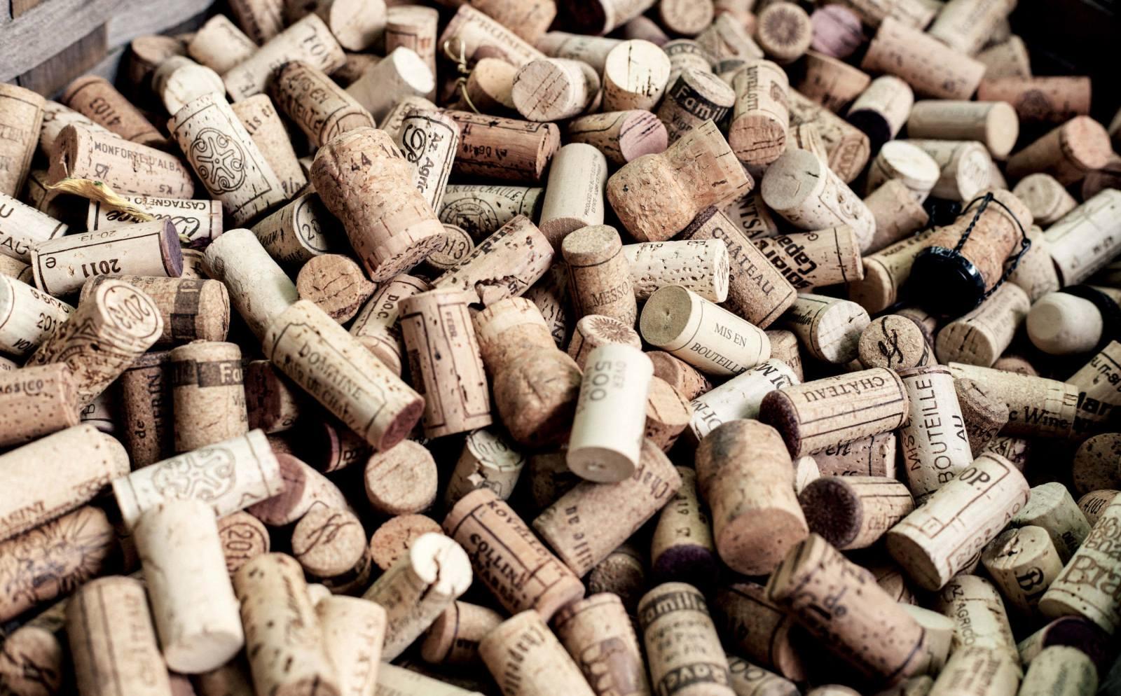 guide debutant vin