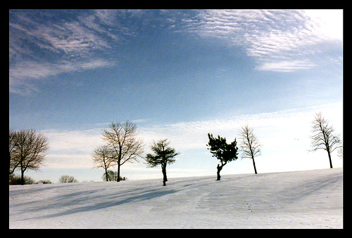 Photo by Serge Arsenie