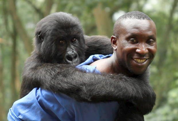 Virunga