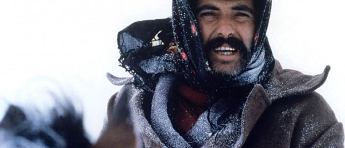 Sürü (Zeki Ökten, 1979)