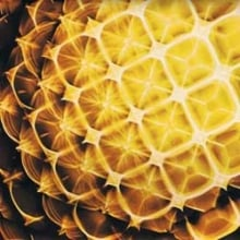 Cymatics 2
