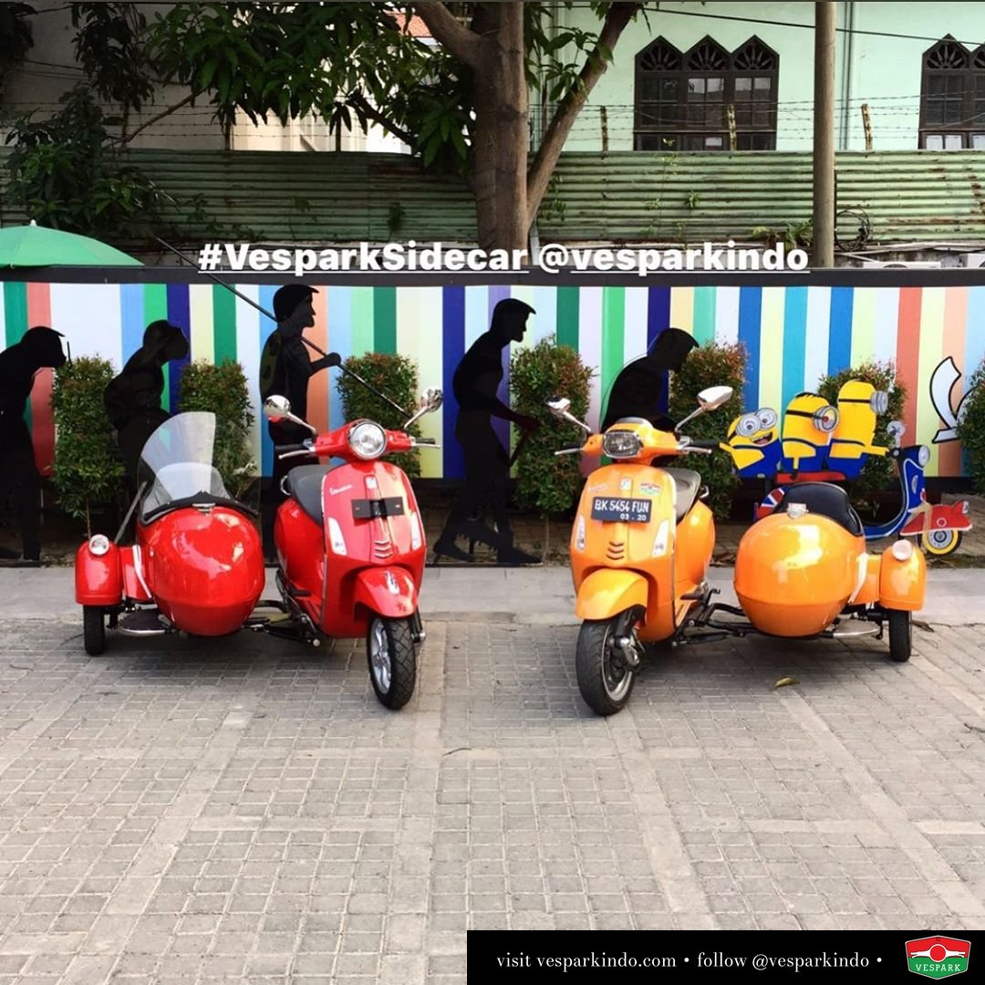 Left or right? Which side do you ride on? Vespark Sidecar for left and right hand ride