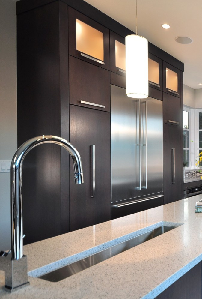 Pullout pantries and stainless fridge