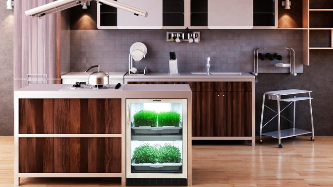 appliance for growing inside