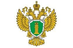 Прокуратура Севастополя требует закрыть браконьерские ресурсы в интернете