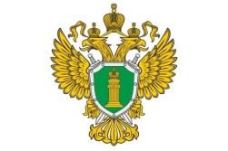 Суд рассмотрит дело о мошенничестве при строительстве жилых домов в Севастополе