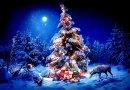 Уже известно, как будет выглядеть главная новогодняя елка Украины (Фото)