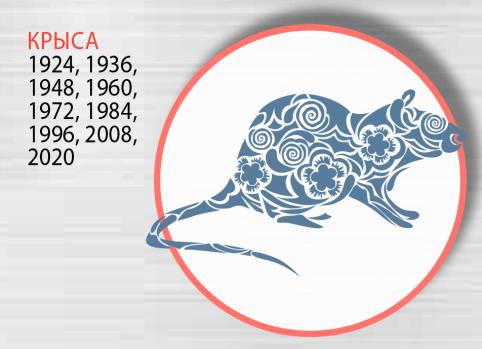 Год Белой Крысы открывает новый двенадцатилетний астрологический курс. Согласно китайскому календарю с 25 января 2020 года.