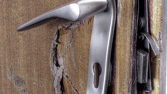 Защитницу животных забрали, выломав дверь квартиры