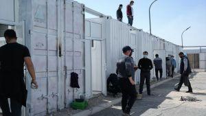 COVID-19 в Узбекистане: 865 инфицированных
