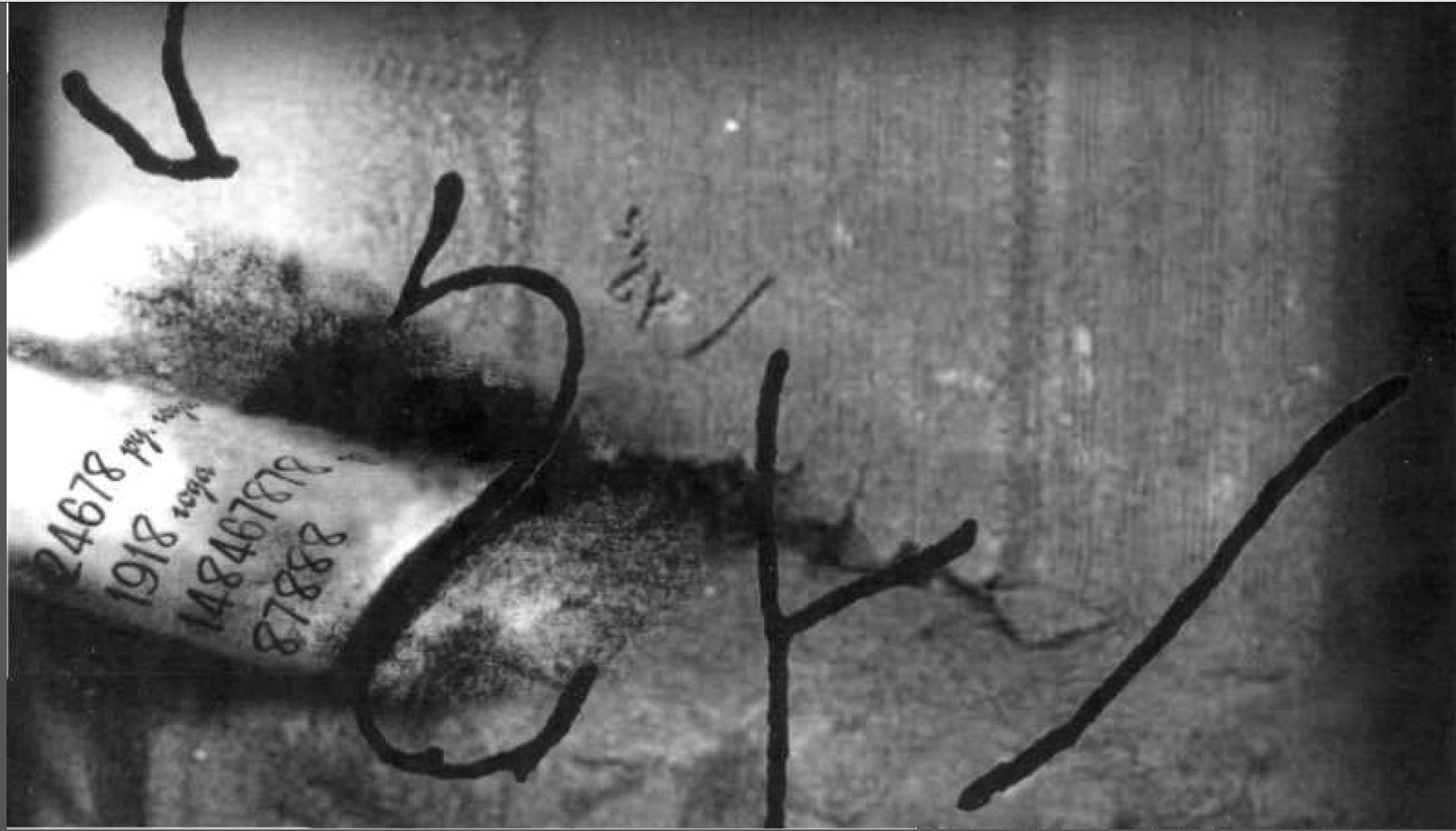Роковое послание со стены Ипатьевского дома