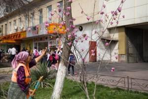 В Узбекистане безработным и бедным открывают профцентры «Ишга мархамат» : выделено 200 млрд сумов