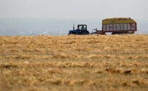 Глава компании присвоил крупный кредит фермера в Джизакской области