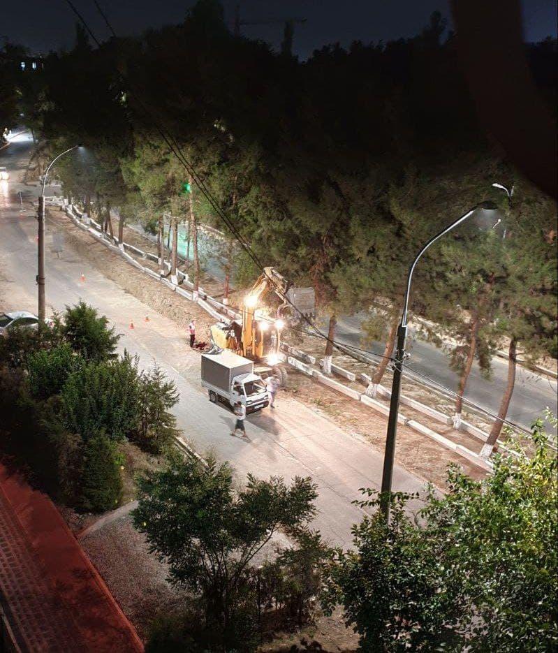 В Ташкенте вырубают знаменитую аллею на Карасу