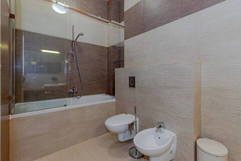 bathtube and toilet