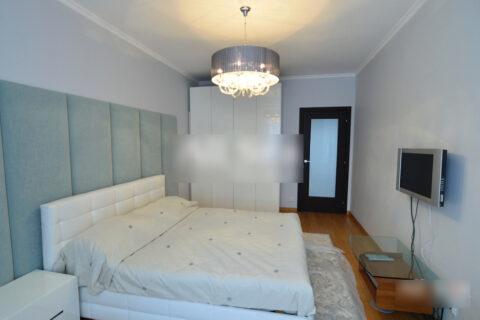 bright diplomatic apartment