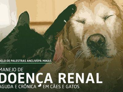 Manejo de Doença Renal Aguda e Crônica em cães e gatos
