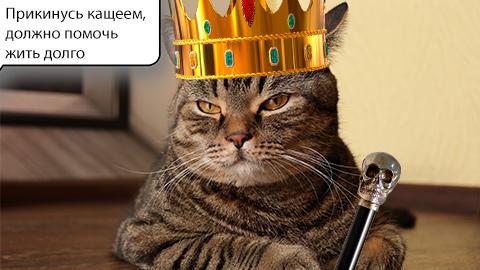 Сэмыч с короной