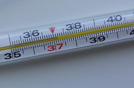 38.5 градусник фото