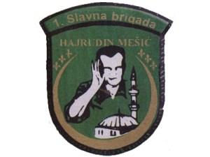 Prva slavna brigada Hajrudin Mesic
