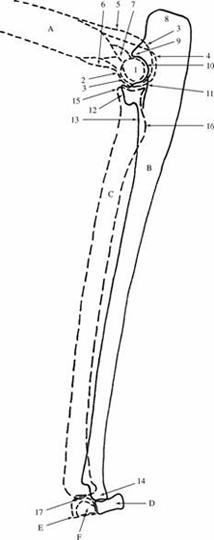 c08_image018.jpg