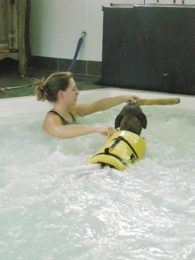 Aquatic Therapy | Veterian Key