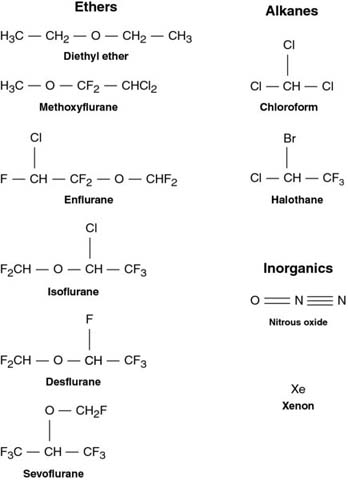 Diagram shows chemical structures of ethers like diethyl ether, enflurane, isoflurane, et cetera, and alkanes like chloroform, halothane, et cetera.