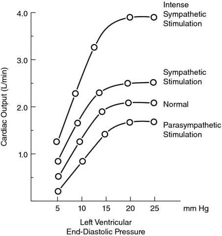 Graph shows left ventricular end-diastolic pressure versus cardiac output with plots for intense sympathetic stimulation, sympathetic stimulation, normal, and parasympathetic stimulation.