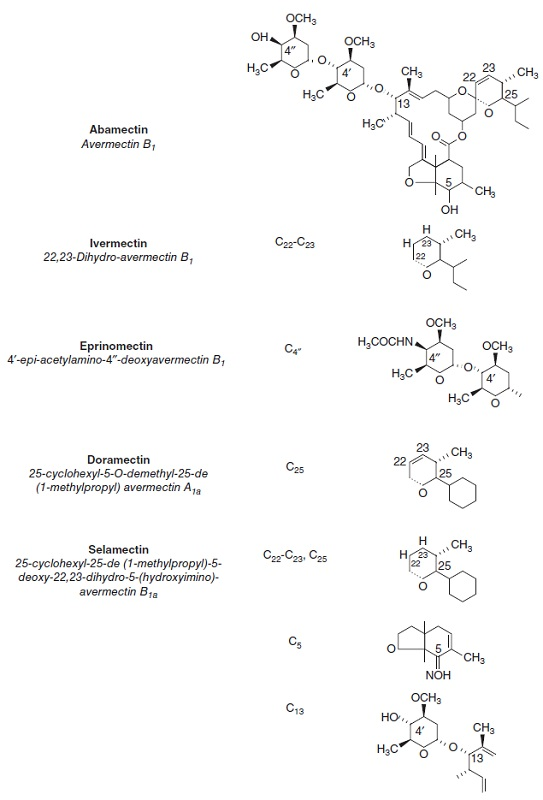 Diagram shows chemical structures with labels for abamectin, ivermectin, eprinomectin, doramectin, and selamectin.