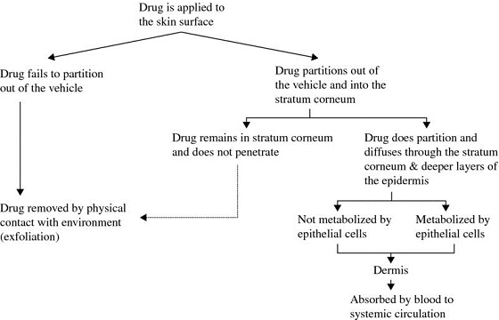 Chart shows topically applied drugs fate where drug is applied to skin surface and is divided into drug fails to partition out of vehicle and then into drug removed by physical contact, et cetera.