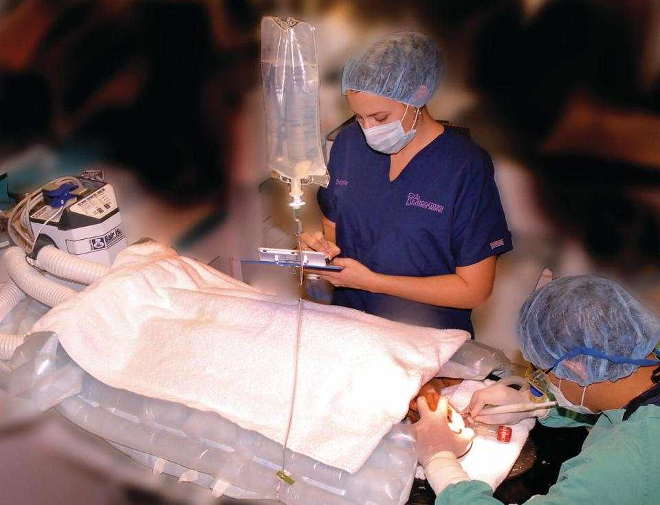 A man in surgical attire performing dental examination on an intubated patient under general anesthesia. A woman in scrub suit, cap, and mask is standing beside the patient while writing on a note pad.