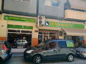 Veterinaria_La_Florida_Alicante_foto