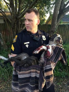 Sgt. Rich Mills carries Cabela to safety