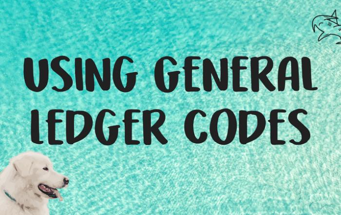 Using General Ledger codes