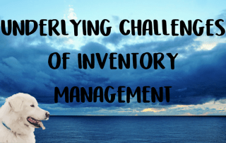 challenges inventory management