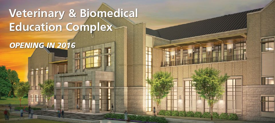 Texas A&M Breaks Ground For New Veterinary & Biomedical