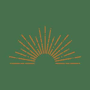 Vet Reflections icon - copper transparent