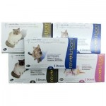 Revolution for Cats Available at VetRxDirect