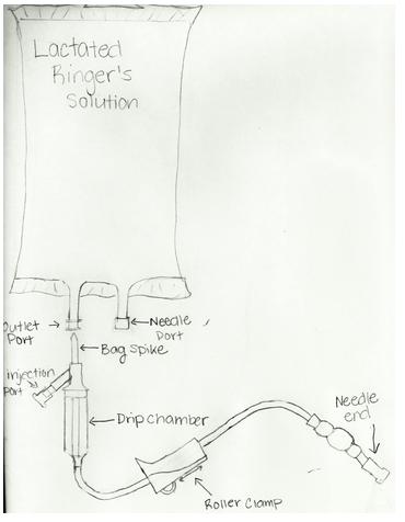 Fluid Bag Diagram for Giving Subcutaneous Fluids for Cats