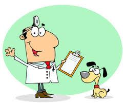 vet diagnosis